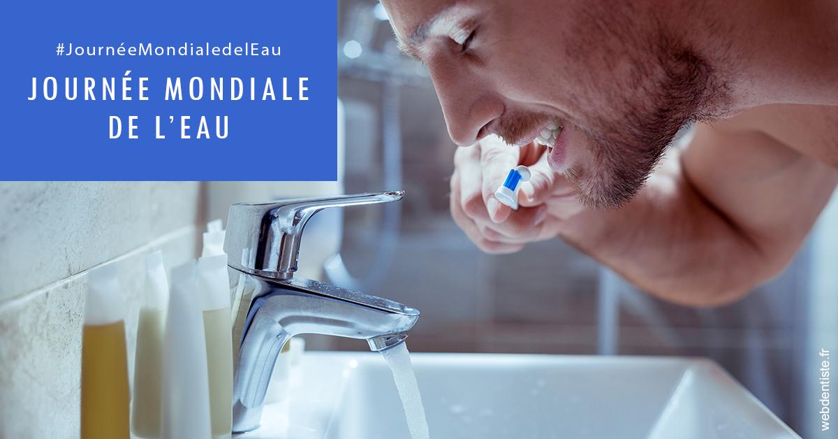 https://dr-ahr-catherine.chirurgiens-dentistes.fr/Journée de l'eau 2